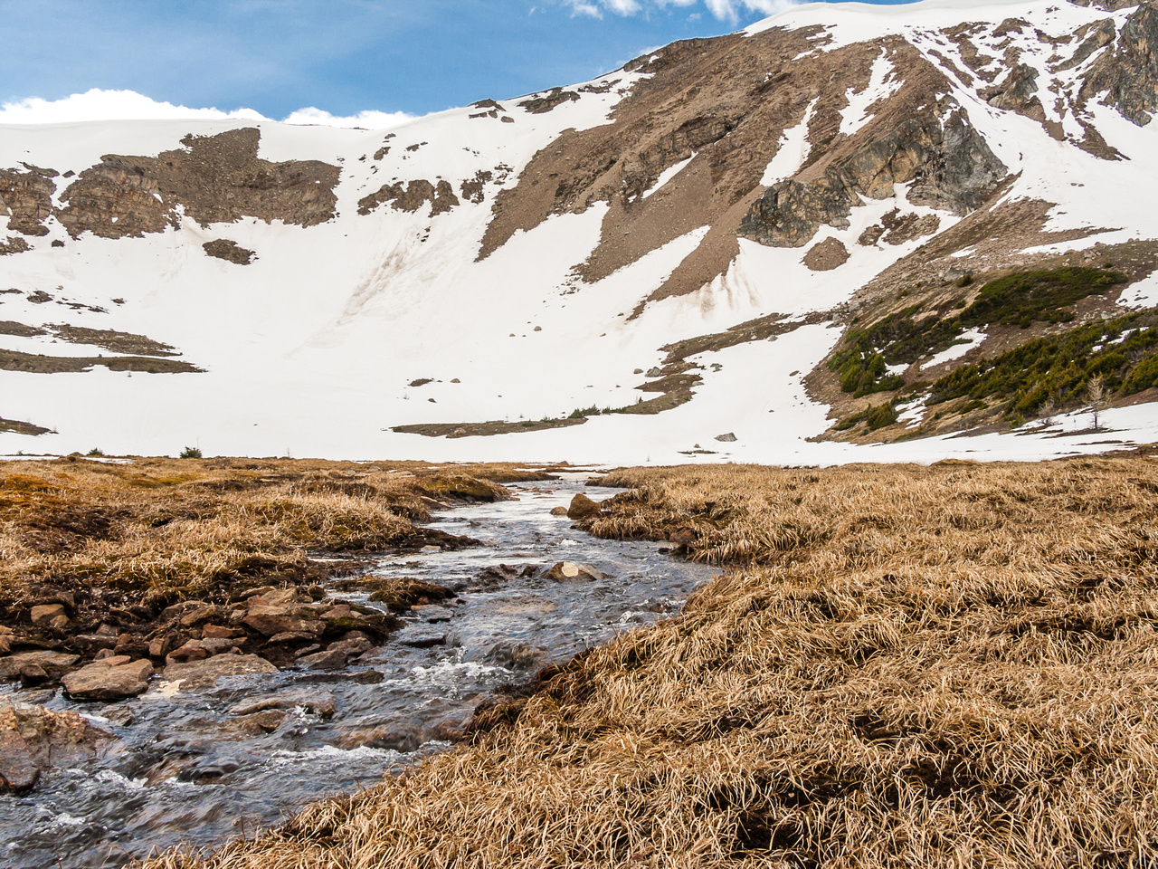 A stream runs down from Harvey Pass to one of the small tarns above Bourgeau Lake.