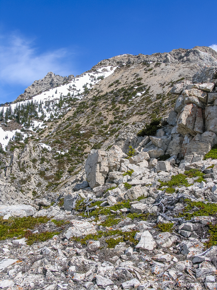 Looking up the scree slope to the lower ridge.