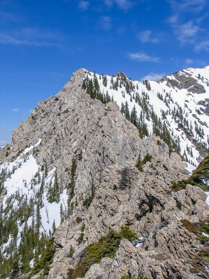 We approach the famous cockscomb section of the ridge.