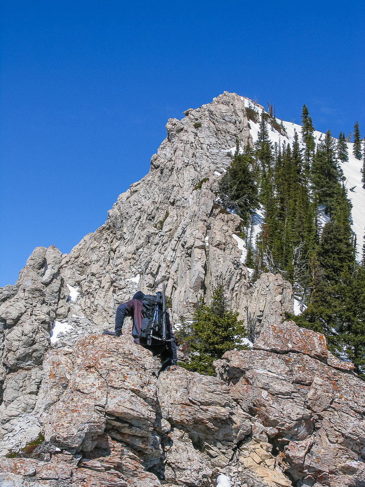 On the cockscomb section of the south ridge of Crandell.
