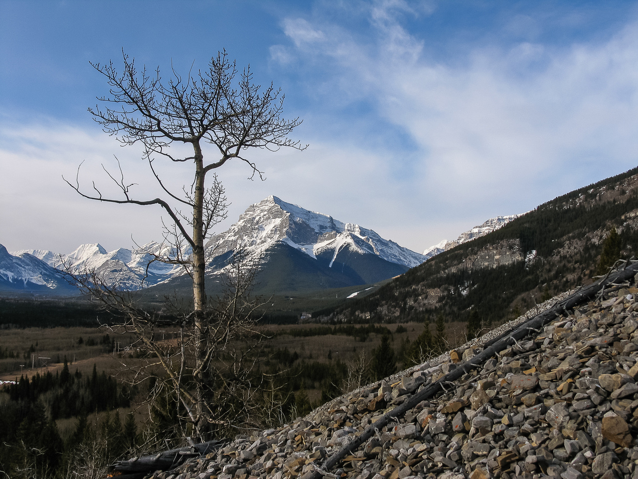 A lonely tree makes a nice foreground subject as I start up the long gully on Lorette.