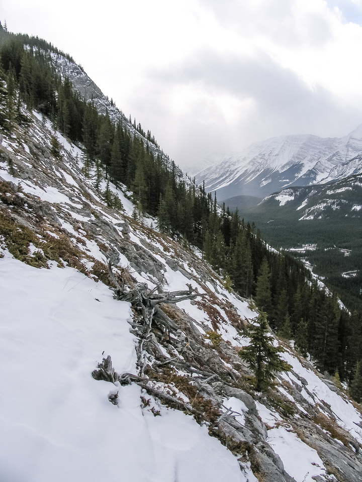 A shot of the steep slope up onto the ridge taken on the way back.