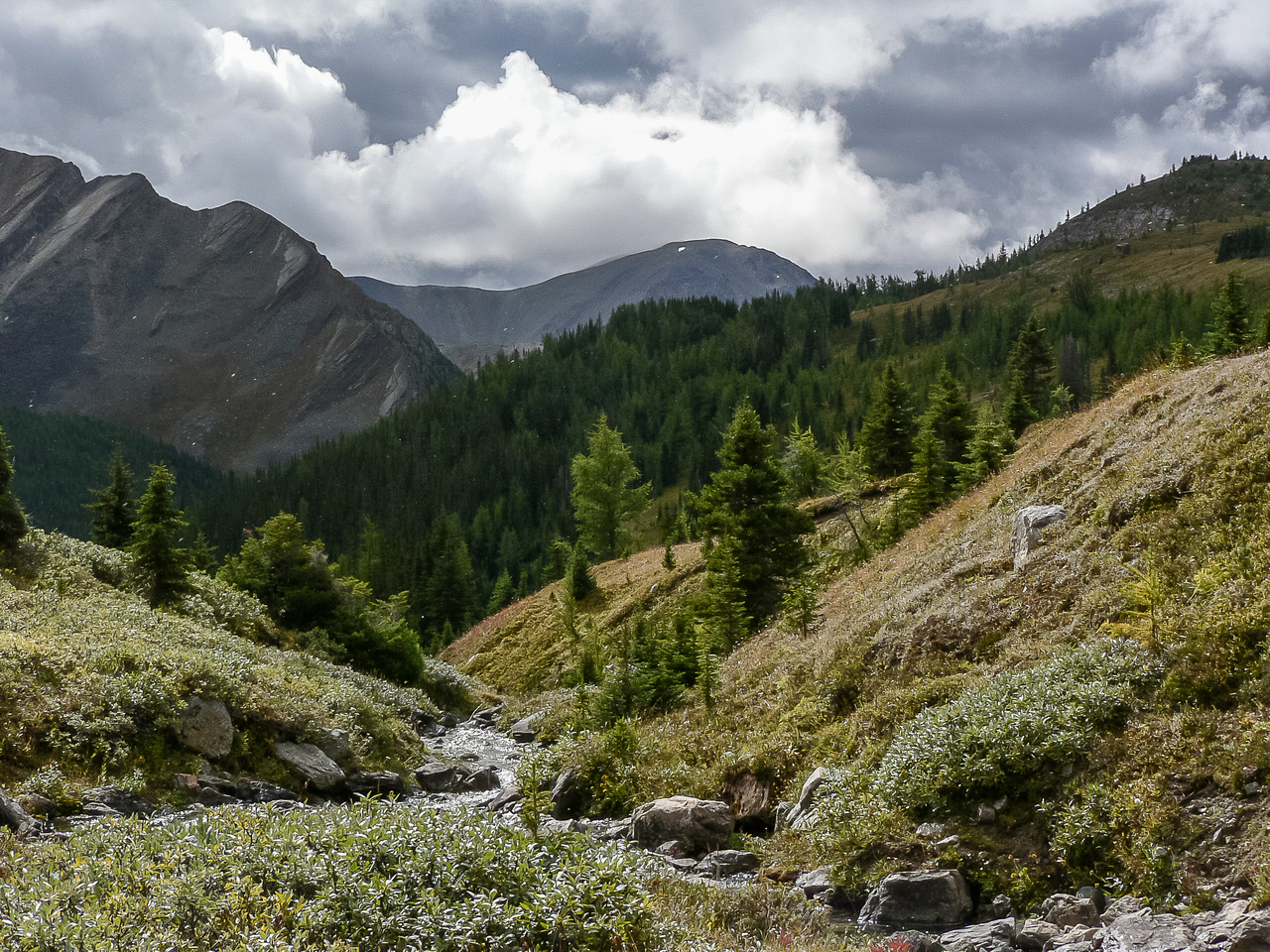 Hiking up the Hidden Lake outlet stream.