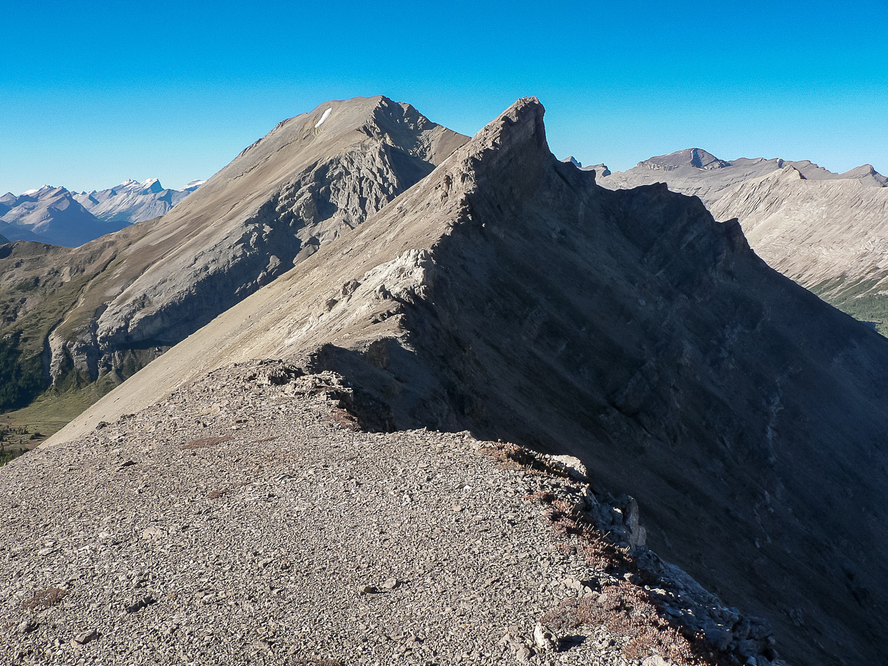 Views to the north summit of Brachiopod with Fossil in the bg.