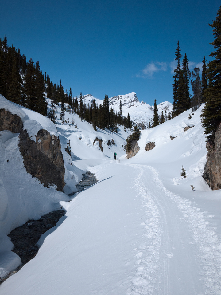 The creek is running as we ski over it.