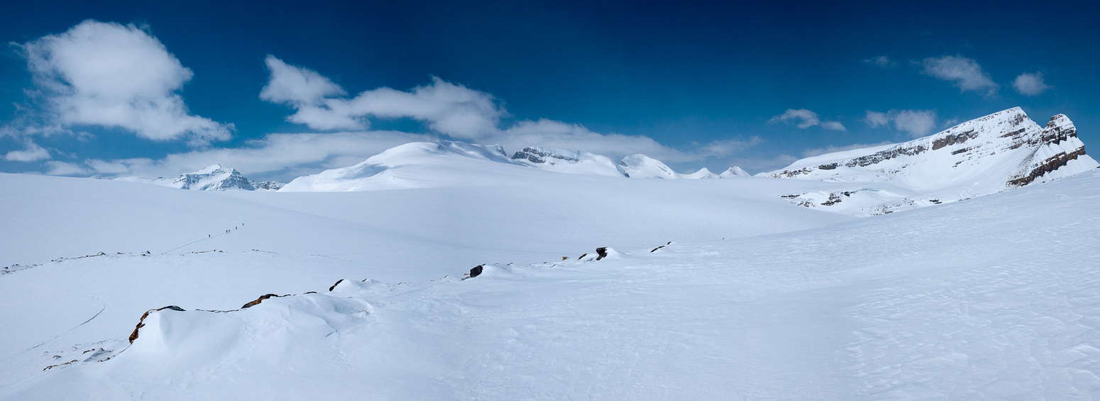 A group of skiers heads out across the Wapta Icefield.